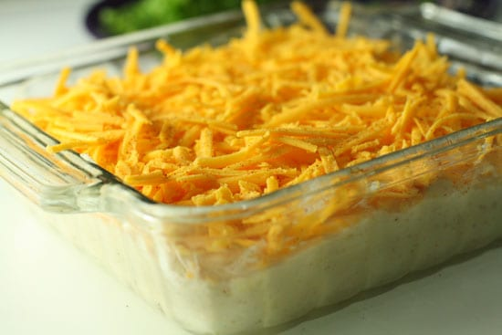Dip with cheese.