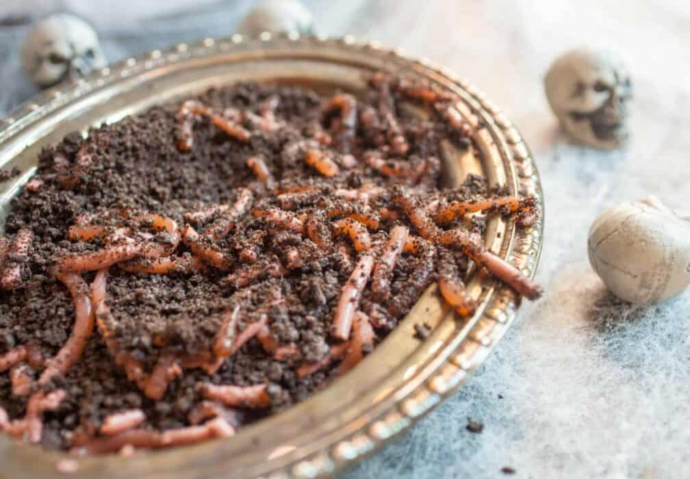 Homemade Realistic Worms: These are super fun to make and look SO realistic. SPOOKY!   macheesmo.com
