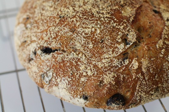 Crusty and Delicious olive bread!