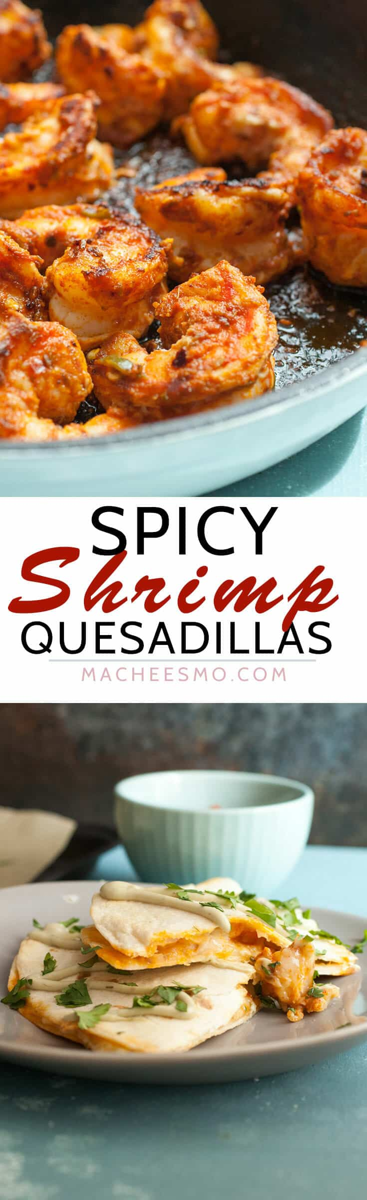 Spicy Shrimp Quesadilla Recipe