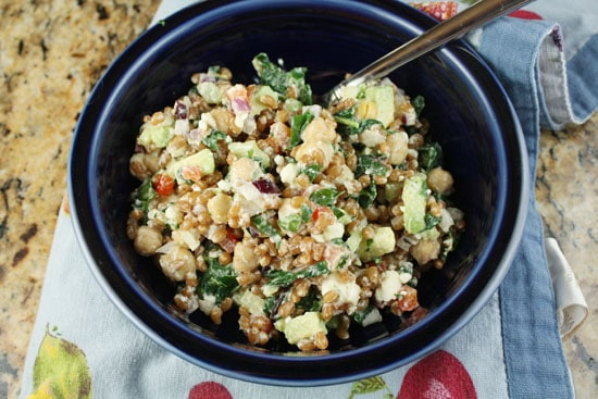 rainbow wheat salad