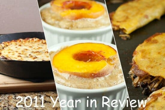 2011review