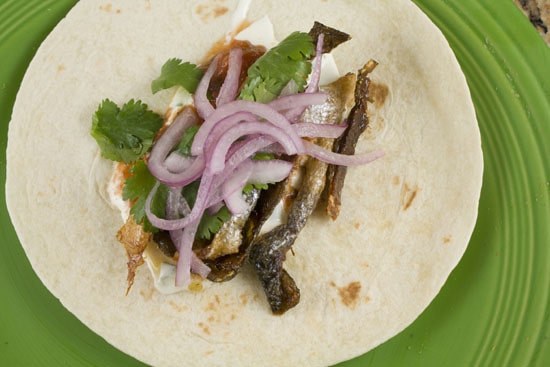 skin tacos - Salmon Tacos