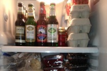 fridgepic