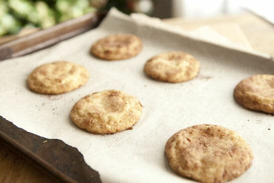 Done deal - Coconut Snickerdoodles