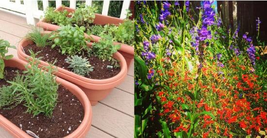 gardeningstuff
