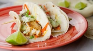 Blackened Tilapia Tacos: Topped with a spicy avocado cream sauce and a quick pickled radish slaw!