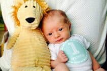 theo_1month