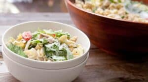 Chicken Caesar Pasta Salad: The perfect combination of salad and pasta. Great for a picnic or weekday lunches! I make mine with grilled chicken, homemade croutons, and a light caesar dressing!