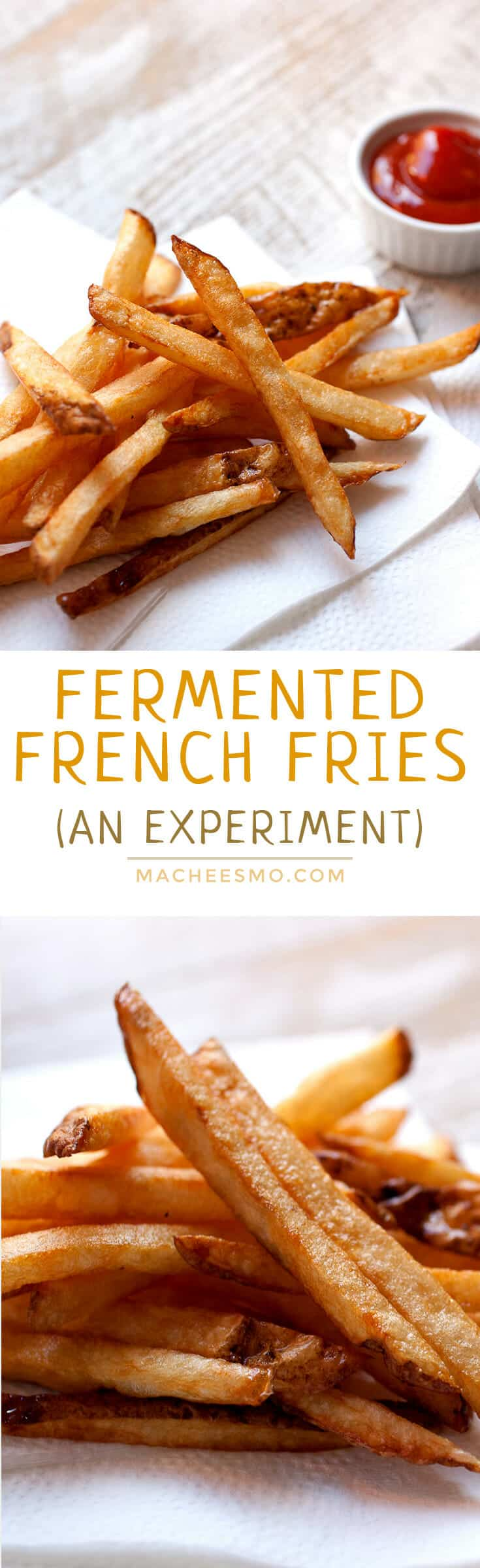 Fermented French Fries: Brined and fermented potatoes double fried for perfectly seasoned and crispy fries. No extra salt needed! These are really delicious, but are they worth the work?!! Check out the post for my full breakdown! | macheesmo.com