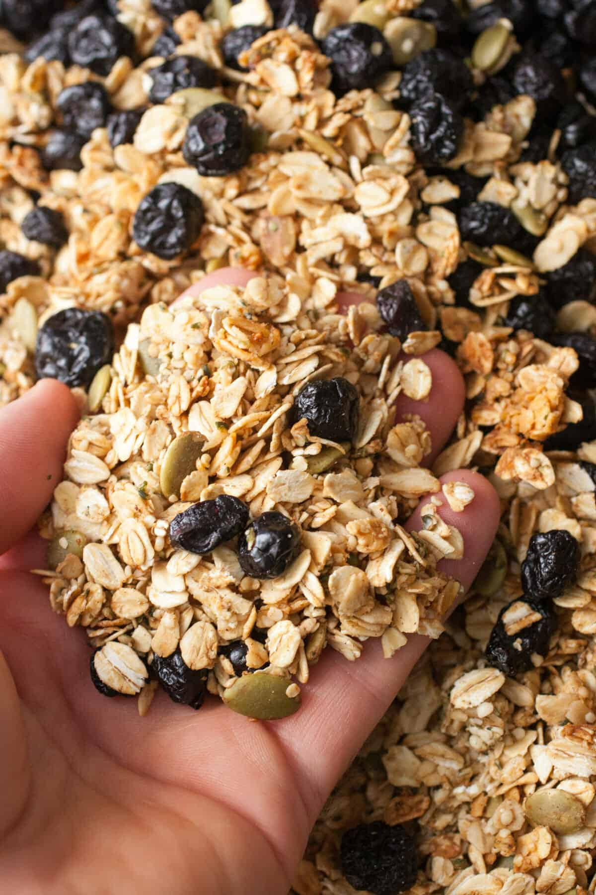 Hemp Seed Pumpkin Granola: Crunchy granola with loads of fiber. I like to add just a touch of sweetness with real honey and dried blueberries. Very good with milk or yogurt! | macheesmo.com