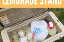 Pandemic Lemonade Stand