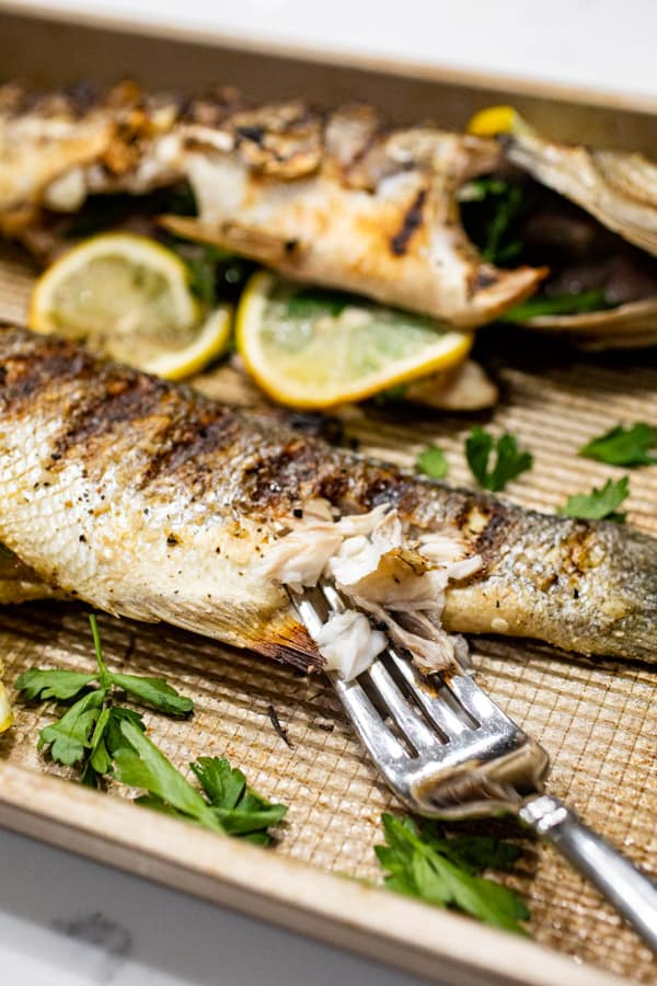 Bite of Whole Grilled Fish